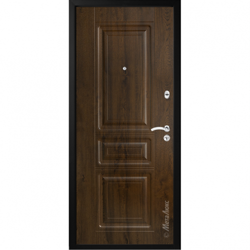 Metal door for apartment or house M49