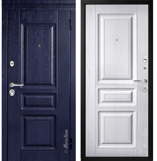 Steel doors for an apartment M600
