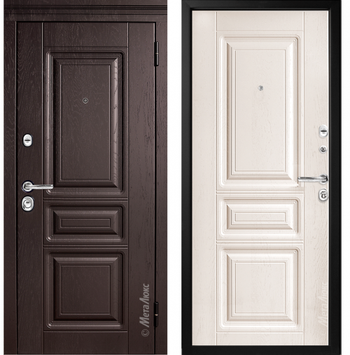 Steel doors for an apartment M601