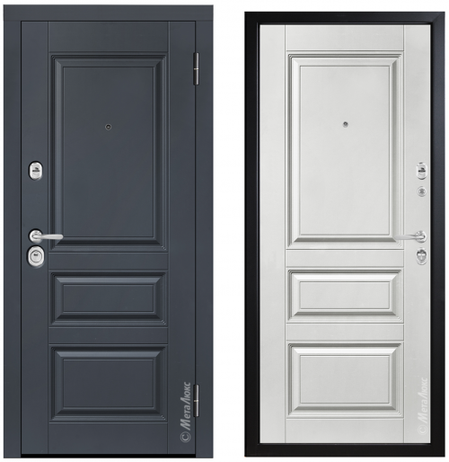 Metal doors for house or apartment