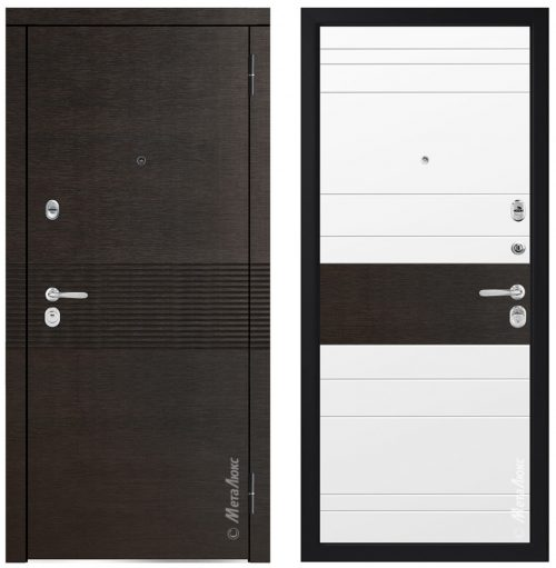 Metal doors for an apartment