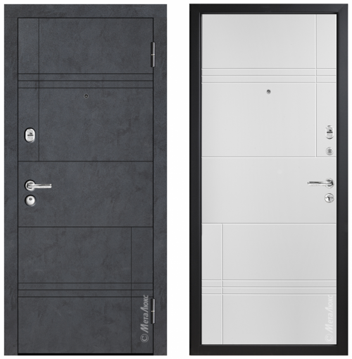 Metal doors for an apartment and house